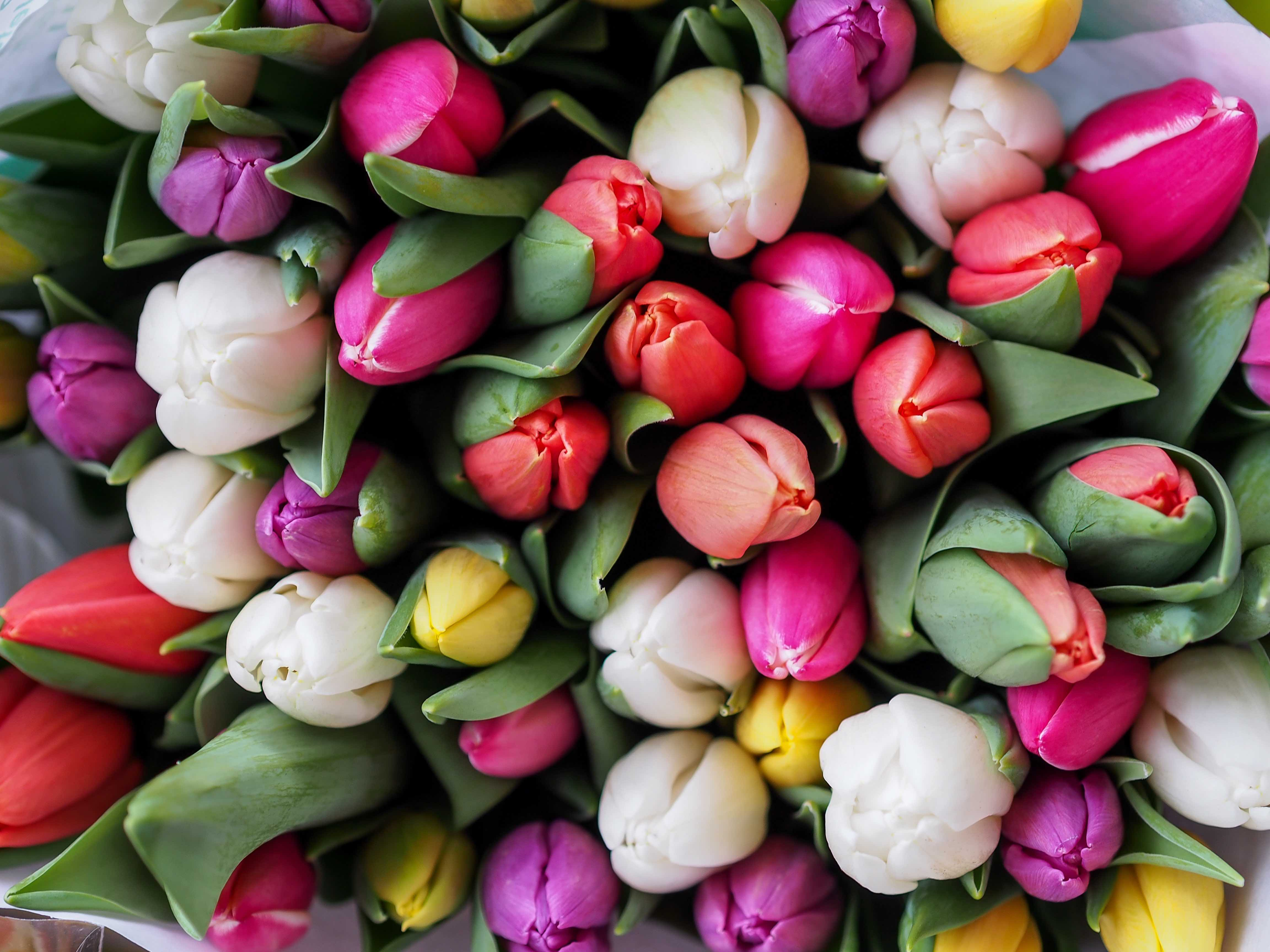 Flowers Springtime Best Month for Sellers
